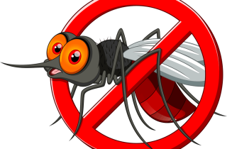Mosquitos - Mosquito Nets Costa Blanca