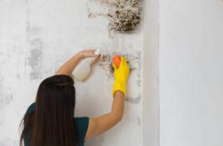 Condensation How To Fix   Builders Costa Blanca