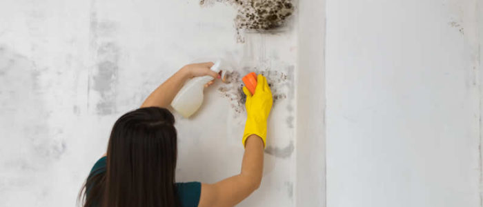Condensation How To Fix | Builders Costa Blanca