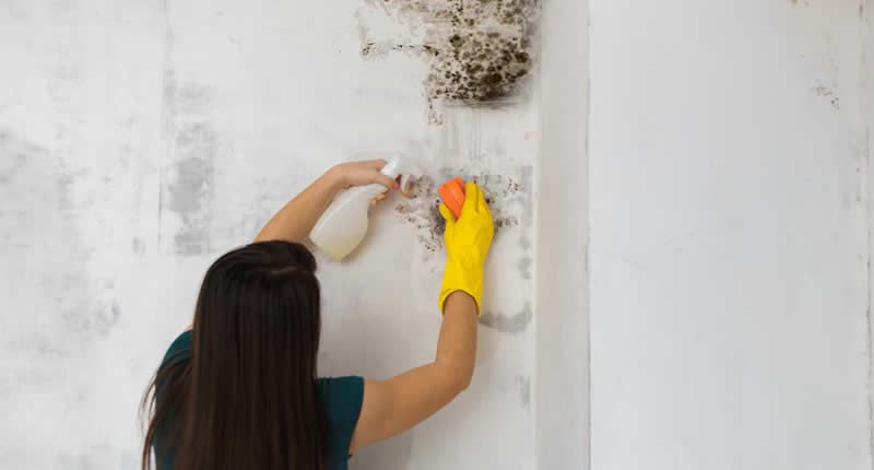 Handycall Construction | Damp, Condensation, Mould | Specialist Builders Costa Blanca North