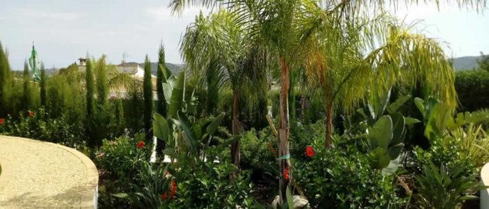 Charlesworth Gardens - Irrigation